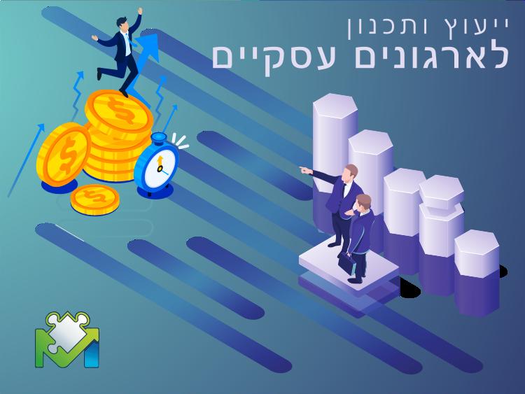 ייעוץ ותכנון לארגונים עסקיים-מתודע